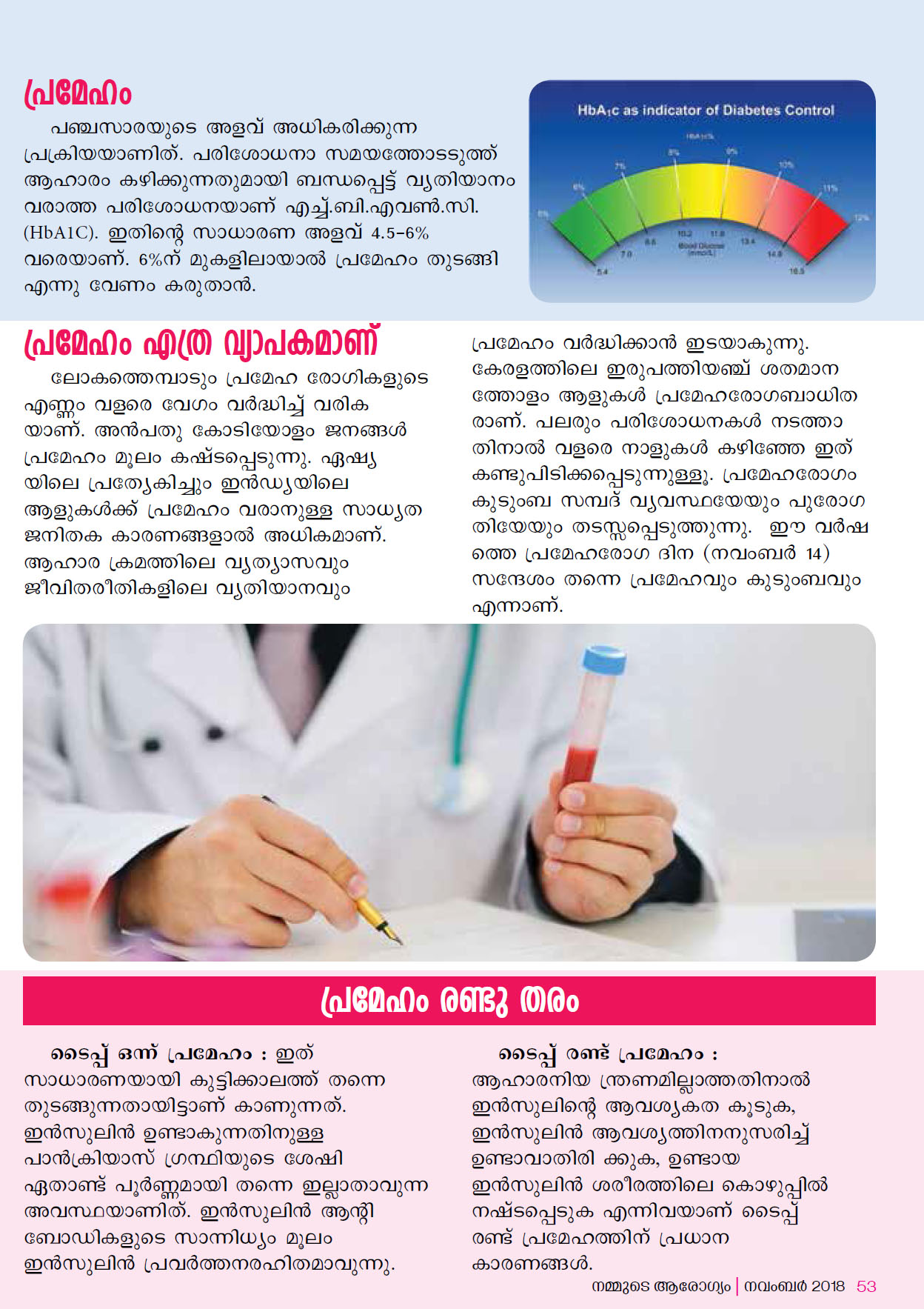 Keyhole Surgery for Diabetes by Dr R Padmakumar Page 2